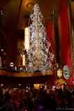 Tree in the lobby