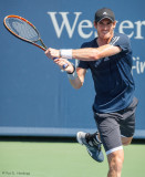 Andy Murray, 2014