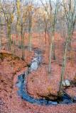 Curving stream