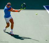 Shadow Nadal