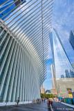 Oculus and 1WTC