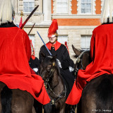 Mounting of the guard
