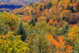 Fall, Hocking Hills, 2007