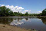 Tidal mud flat