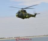 iar-330-socat-puma-3.JPG