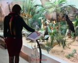 muzeul-antipa-ecran.JPG