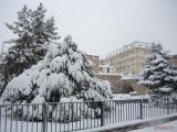 iarna-zapada-bucuresti-27.JPG