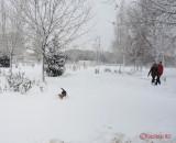 iarna-zapada-bucuresti-34.JPG