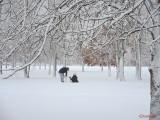 iarna-zapada-bucuresti-35.JPG