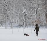iarna-zapada-bucuresti-37.JPG