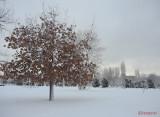 iarna-zapada-bucuresti-40.JPG