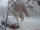 iarna-zapada-bucuresti-44.JPG