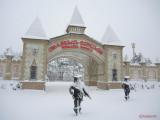 oraselul-copiilor-iarna-zapada-bucuresti-1.JPG