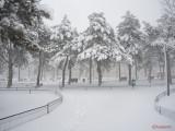 oraselul-copiilor-iarna-zapada-bucuresti-16.JPG