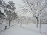 oraselul-copiilor-iarna-zapada-bucuresti-17.JPG