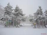 oraselul-copiilor-iarna-zapada-bucuresti-8.JPG
