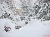 parcul-tineretului-iarna-zapada-bucuresti-1.JPG