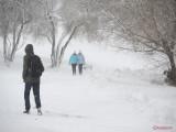 parcul-tineretului-iarna-zapada-bucuresti-12.JPG