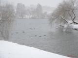 parcul-tineretului-iarna-zapada-bucuresti-16.JPG