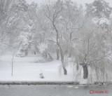 parcul-tineretului-iarna-zapada-bucuresti-17.JPG