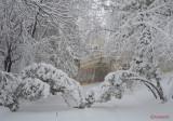 parcul-tineretului-iarna-zapada-bucuresti-2.JPG