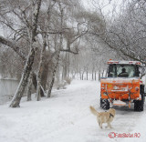 parcul-tineretului-iarna-zapada-bucuresti-21.JPG