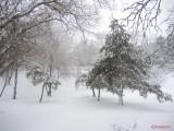 parcul-tineretului-iarna-zapada-bucuresti-22.JPG