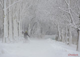 parcul-tineretului-iarna-zapada-bucuresti-4.JPG