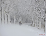 parcul-tineretului-iarna-zapada-bucuresti-5.JPG