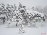 parcul-tineretului-iarna-zapada-bucuresti-32.JPG