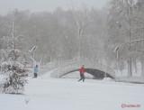 parcul-tineretului-iarna-zapada-bucuresti-38.JPG