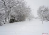 parcul-tineretului-iarna-zapada-bucuresti-44.JPG