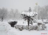 parcul-tineretului-iarna-zapada-bucuresti-46.JPG