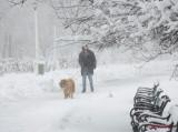 parcul-tineretului-iarna-zapada-bucuresti-49.JPG