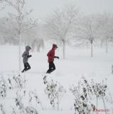 parcul-tineretului-iarna-zapada-bucuresti-50.JPG