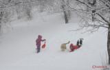 parcul-tineretului-iarna-zapada-bucuresti-56.JPG
