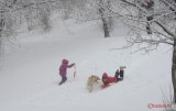 parcul-tineretului-iarna-zapada-bucuresti-58.JPG