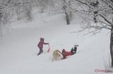 parcul-tineretului-iarna-zapada-bucuresti-59.JPG