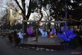 luminite-craciun-oraselul-copiilor-bucuresti-2016-2.jpg
