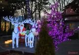 luminite-craciun-oraselul-copiilor-bucuresti-2016-5.jpg