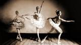 Dargie Ballerinas
