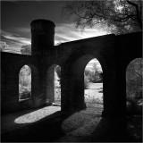 Lengthening shadows, Dyffryn Gardens
