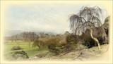 Dyffryn Gardens View