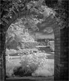 Dyffryn House view from the Lavender Garden