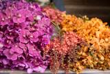 bangkok flower market-13.jpg