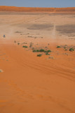 Simpson-desert-birdsville-queensland-1.jpg