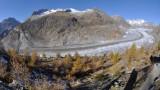 Aletsch Glacier - Fisheye view