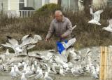 Jerry feeds the gulls