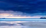 Oystercatcher Sunset