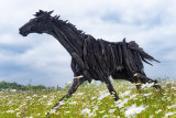 Ghost Horses from the Bog 2